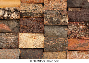 bark of different trees, background