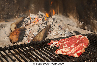 T-Bone steak on grill - Closeup view of t-bone steak on...
