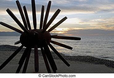 Abstract Sea urchin at sunset on a beach in Puerto Vallarta,...