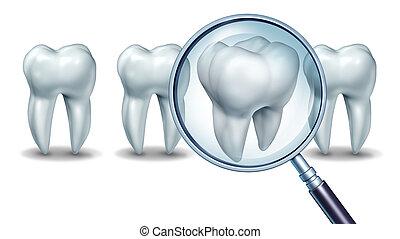 melhor, dental, cuidado
