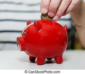female hand saving money - female hand putting euro in money...