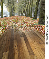 wood textured backgrounds in a room interior on the forest...