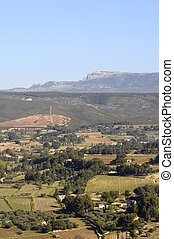 Landscape of vineyards in Provence, south France - Large...
