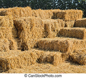 Straw hay bales - Stack of straw hay bales