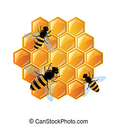 Vector Honeycombs and Bees