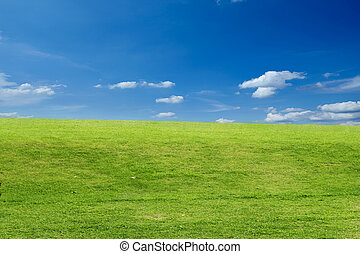 grass field with cloudy sky