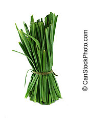 Fresh healthy bio leek herbs isolated on white background