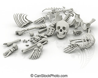 Skeleton parts on the floor