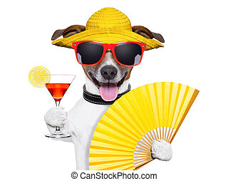 summer cocktail dog cooling of with hand fan
