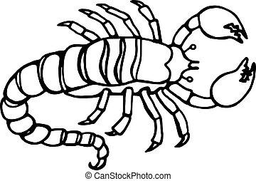 escorpião, linha, desenho