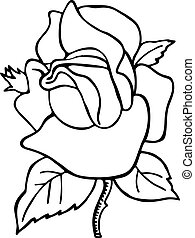 Rose Flower Line Drawing - Simple black and white line...