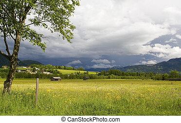 alpine landscape - Landscape in the Austrian Alps near Zell...