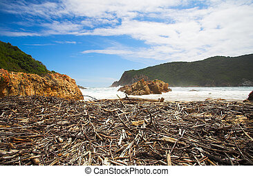 The Heads - Beach covered in driftwood at the bay opening of...
