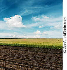 black plowed and green fields under cloudy sky