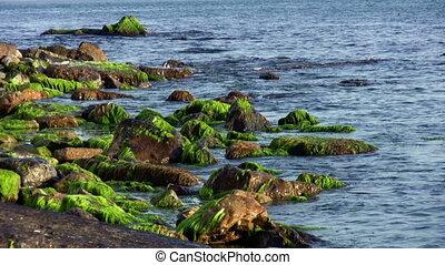 Big Boulders Along The Coast