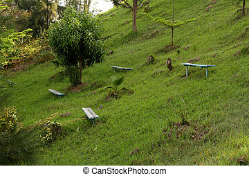 Park Benches on a Green Hill - A group of simple park...