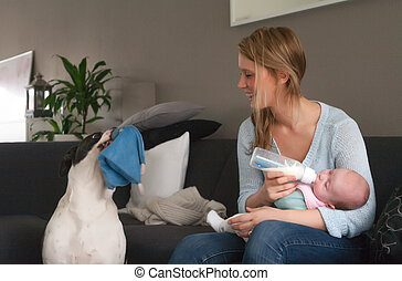 Feeding my baby and the dog wants to play - Happy young...