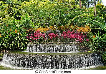 Botanical garden in Singapore