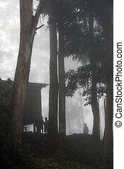 Children in the Fog, Highlands region, Papua New Guinea...