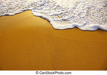 Sea Foam - Closeup of sea foam on wet golden sand with copy...