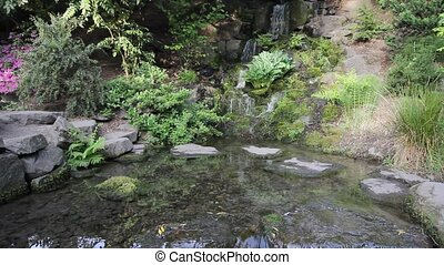 Waterfall with Plants and Trees in Crystal Springs...