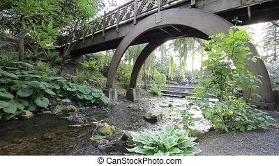 Water Creek with Plants and Trees - Water Creek with Plants,...