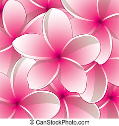 Frangipani! - All occasion frangipani card in vector format.