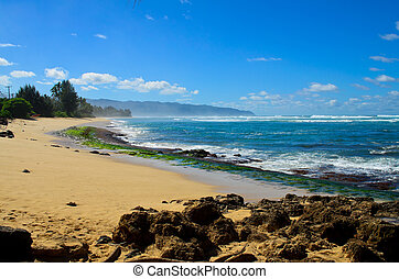 Rocky shore Hawaii