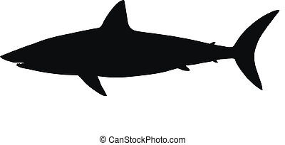 Vector silhouette of shark. - HQ vector silhouette of shark...
