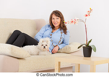 Dog and owner - Little dog maltese sitting with his owner on...