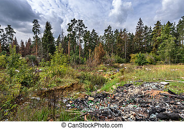Garbage dump in forest - Environmental pollution - garbage...