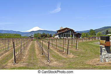 Mt Hood winery - Mt Hood winery in Hood River valley Oregon...