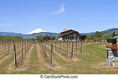 Mt Hood winery. - Mt Hood winery in Hood River valley...