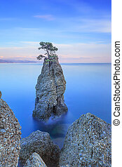 Portofino park Pine tree rock cliff Long exposure Liguria,...
