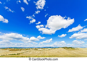 Tuscany landscape, Aerial panoramic view on fields and trees...