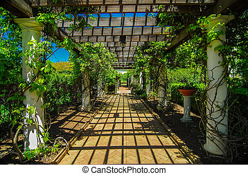 Garden Lattice walkway with stone pavers and vine flowers...