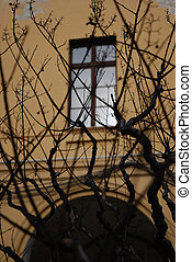 hide window