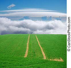 green field trip to heaven