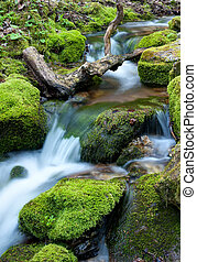 Water flowing over rocks covered with moss in small stream