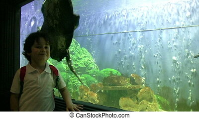 little boy posing near the aquarium