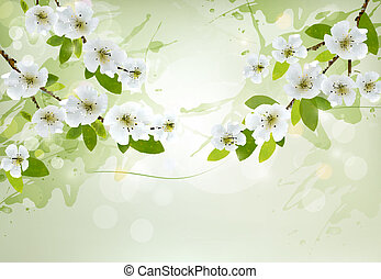 Nature background with white blossoming branches. Vector. -...