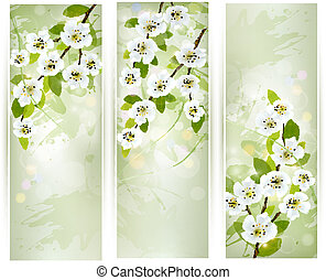 Three banners with blossoming tree branches Vector...