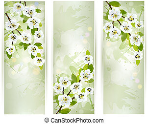Three banners with blossoming tree branches. Vector...