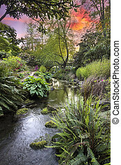 Stream at Crystal Springs Rhododendron Garden Sunset -...