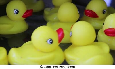 Bright Yellow Rubber Ducky Toys Floating in Water in...