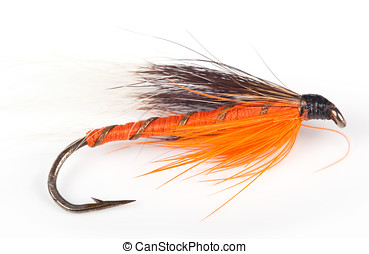 Lure - Photo of a fly fishing lure isolated against a...