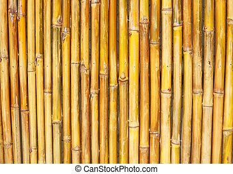 Background Texture Of A Bamboo Fence