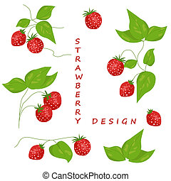 Strawberry - Set of isolated strawberry elements for design