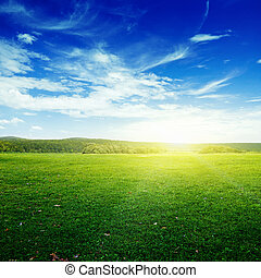 天空, 草地
