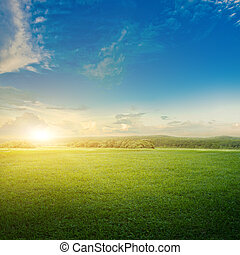 云霧, 草地, 日出